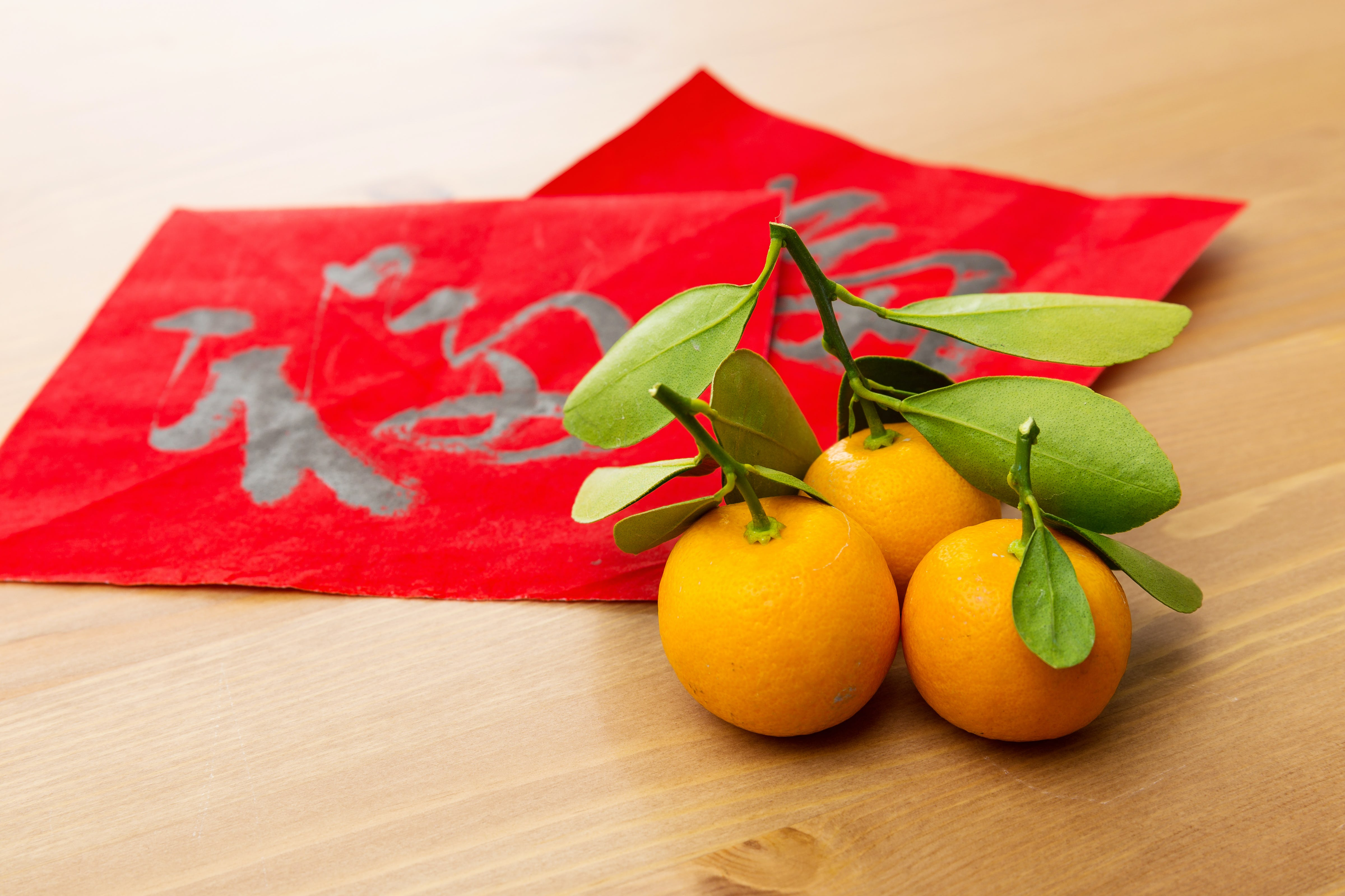 Chinese New Year kumquats and red pockets